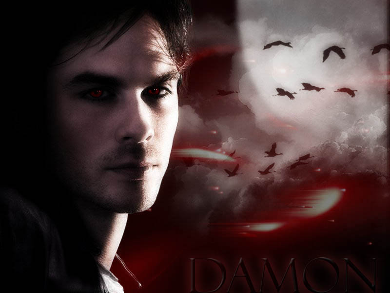 The Vampire Diaries Saga images Damon HD wallpaper and background 800x600