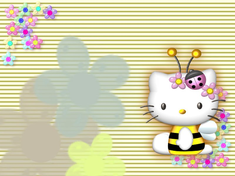 hello kitty bee mobile phone wallpapers 480x800 mobile hd wallpaper ...