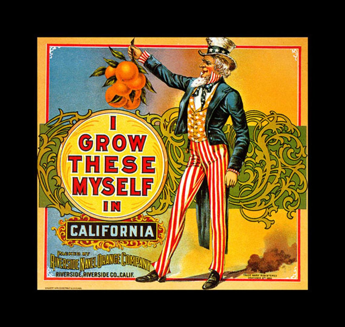 Sam California Vintage Fruit Crate Labels Wallpaper Image 1139x1080