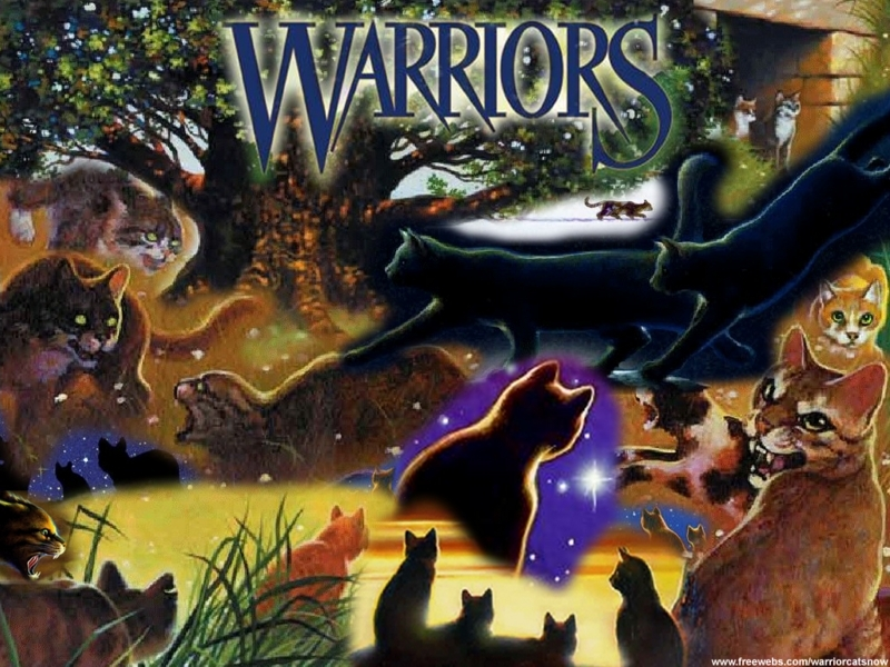 Warrior Cats Cat Collage Background Keywords Warriors Picture Fan 800x600