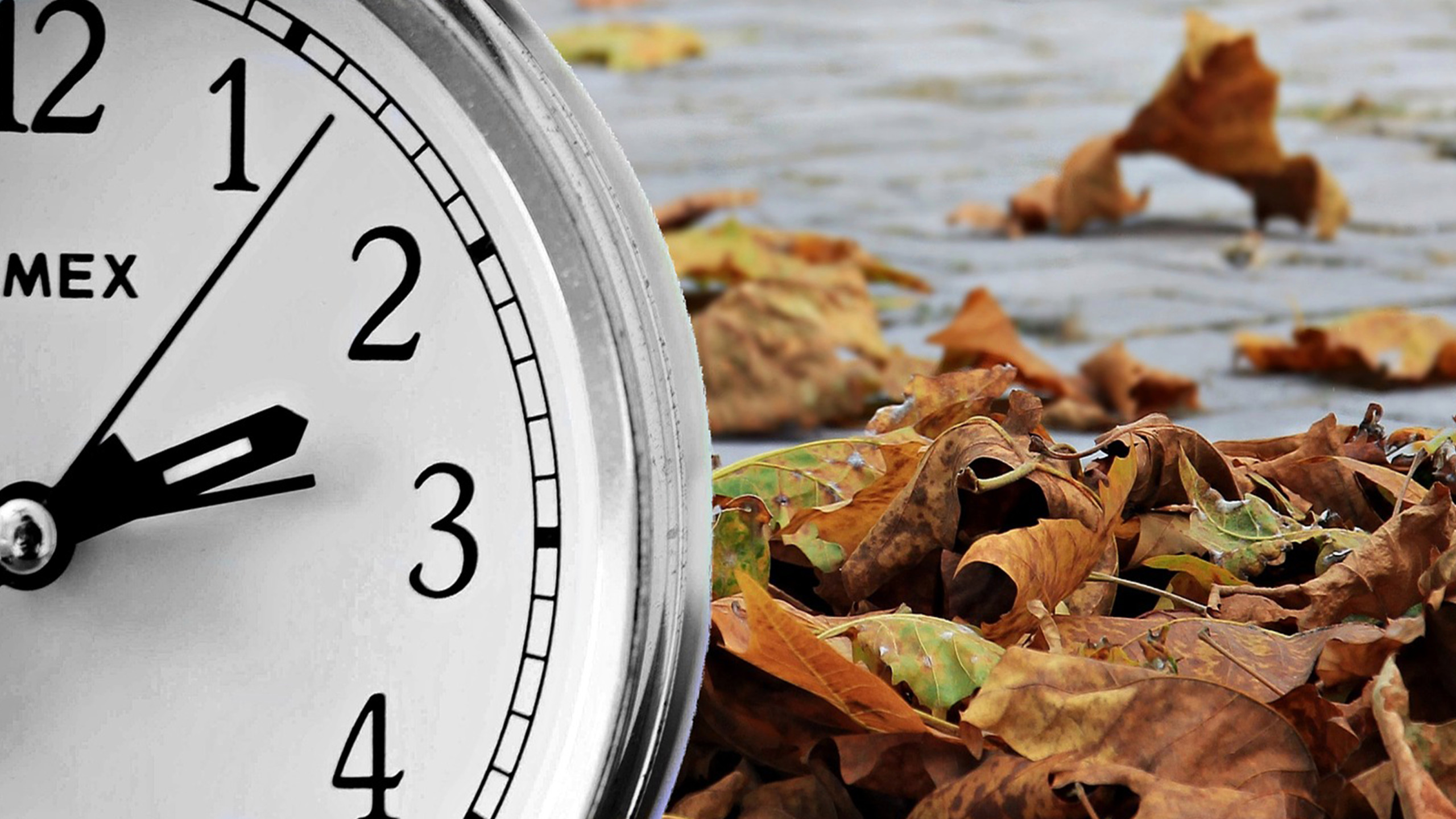 Dont forget to fall back as Daylight Saving Time comes to an 2560x1440