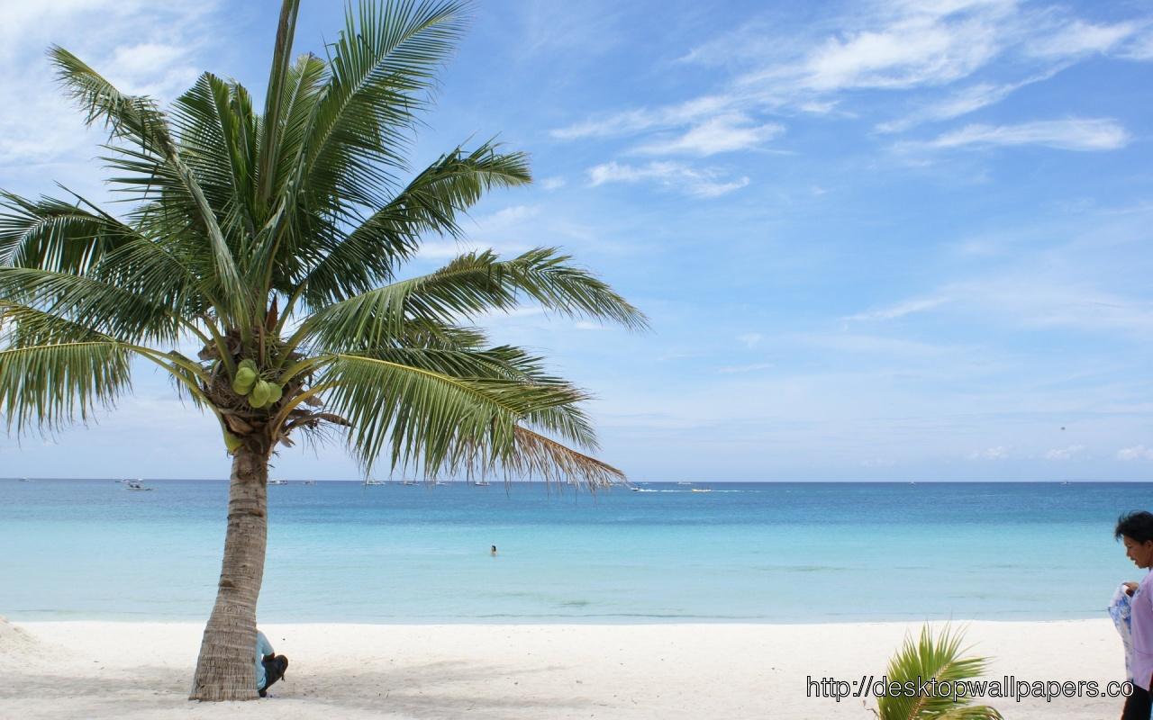 Exotic Beach WallpaperDesktop Wallpapers Download 1280x800