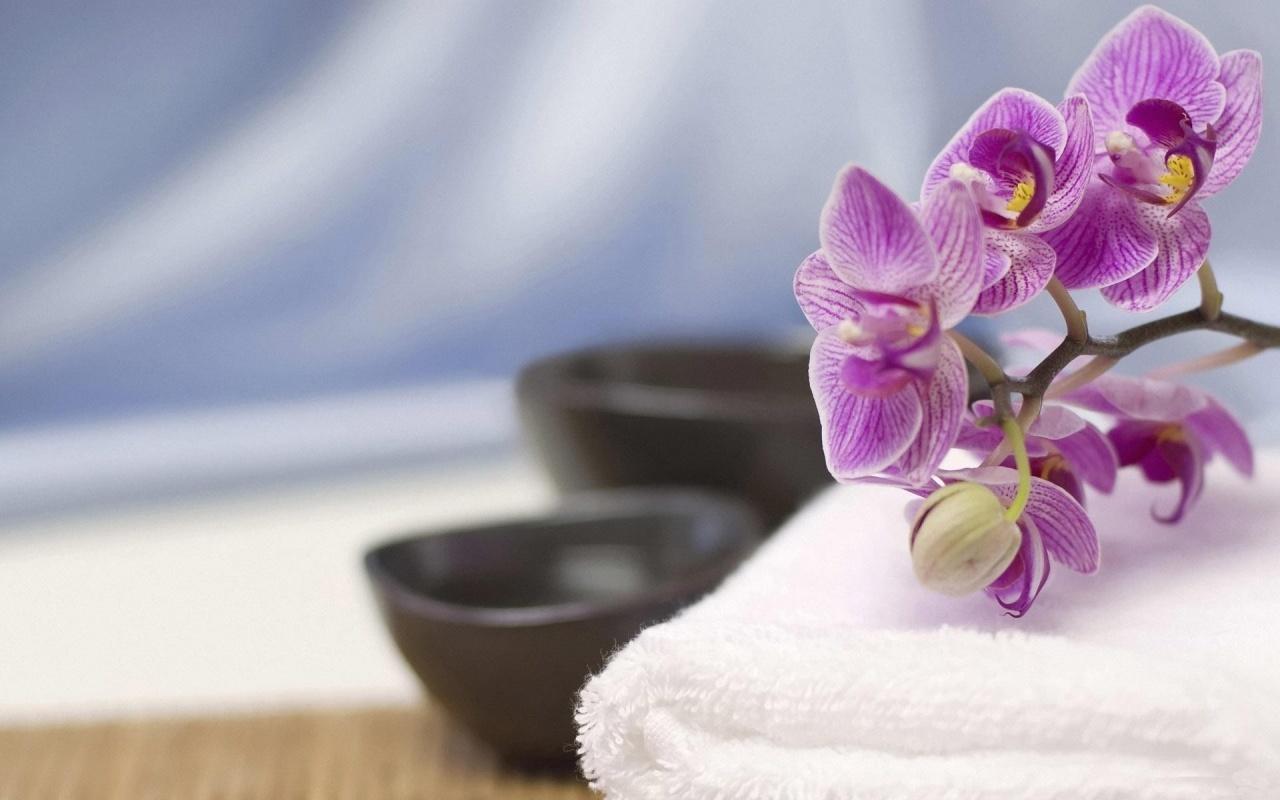 Orchid Live Wallpaper Screenshot