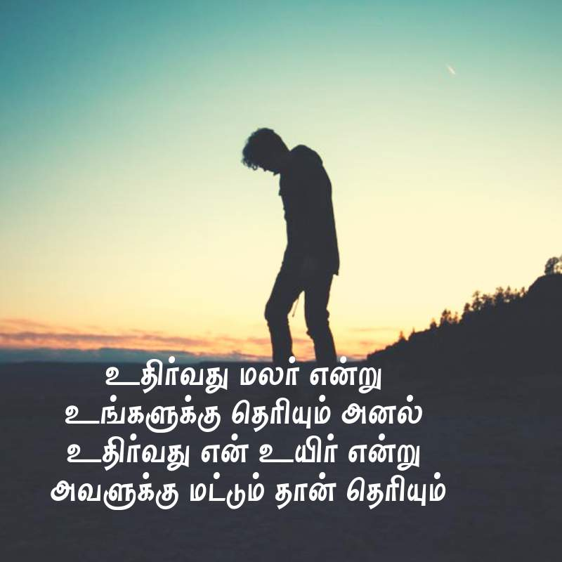Sad Images For Whatsapp Dp In Tamil   Sorry Image Hd Download 800x800