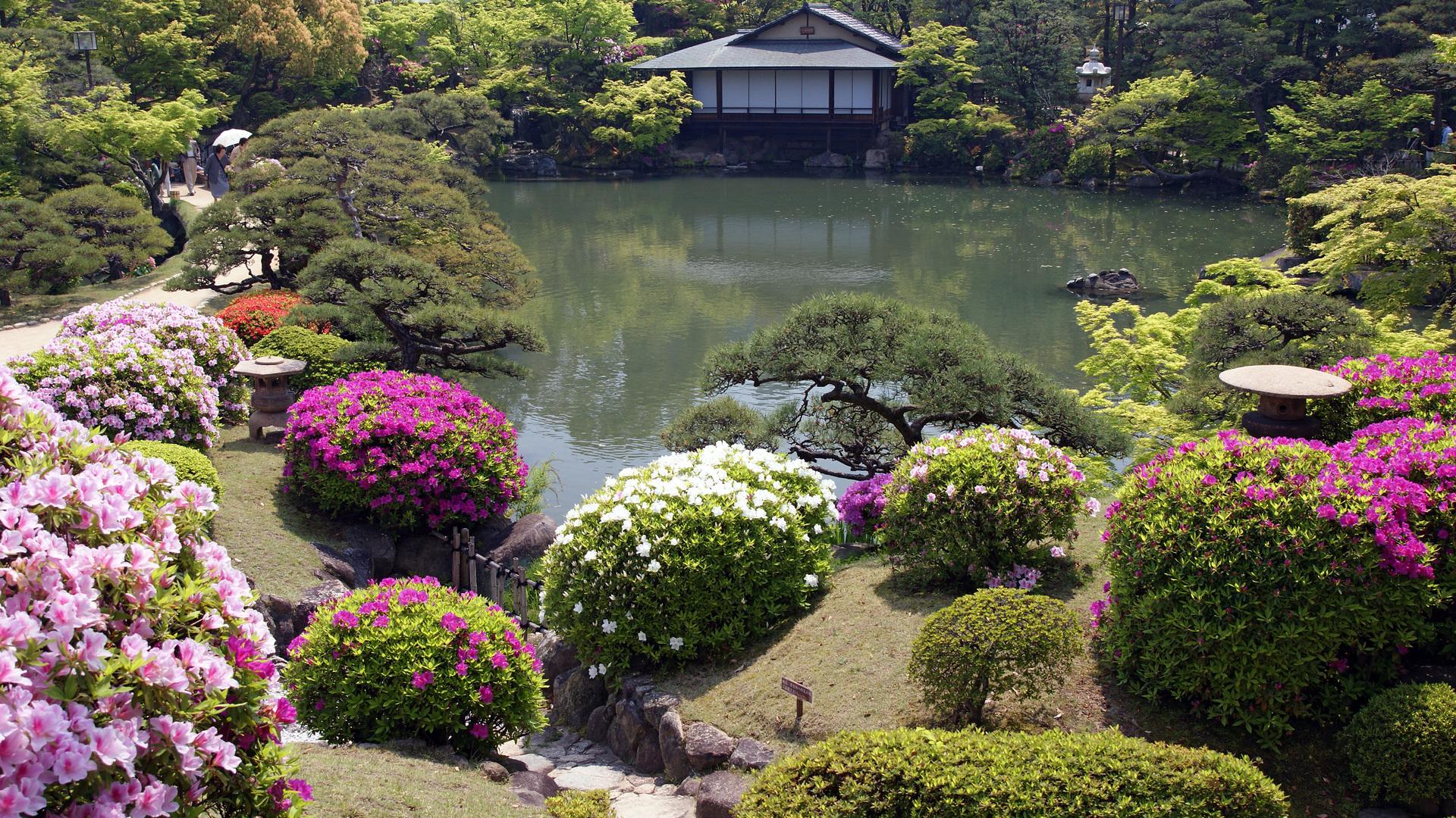 Japanese Garden Wallpaper HD flowers a japanese garden house 1920x1080