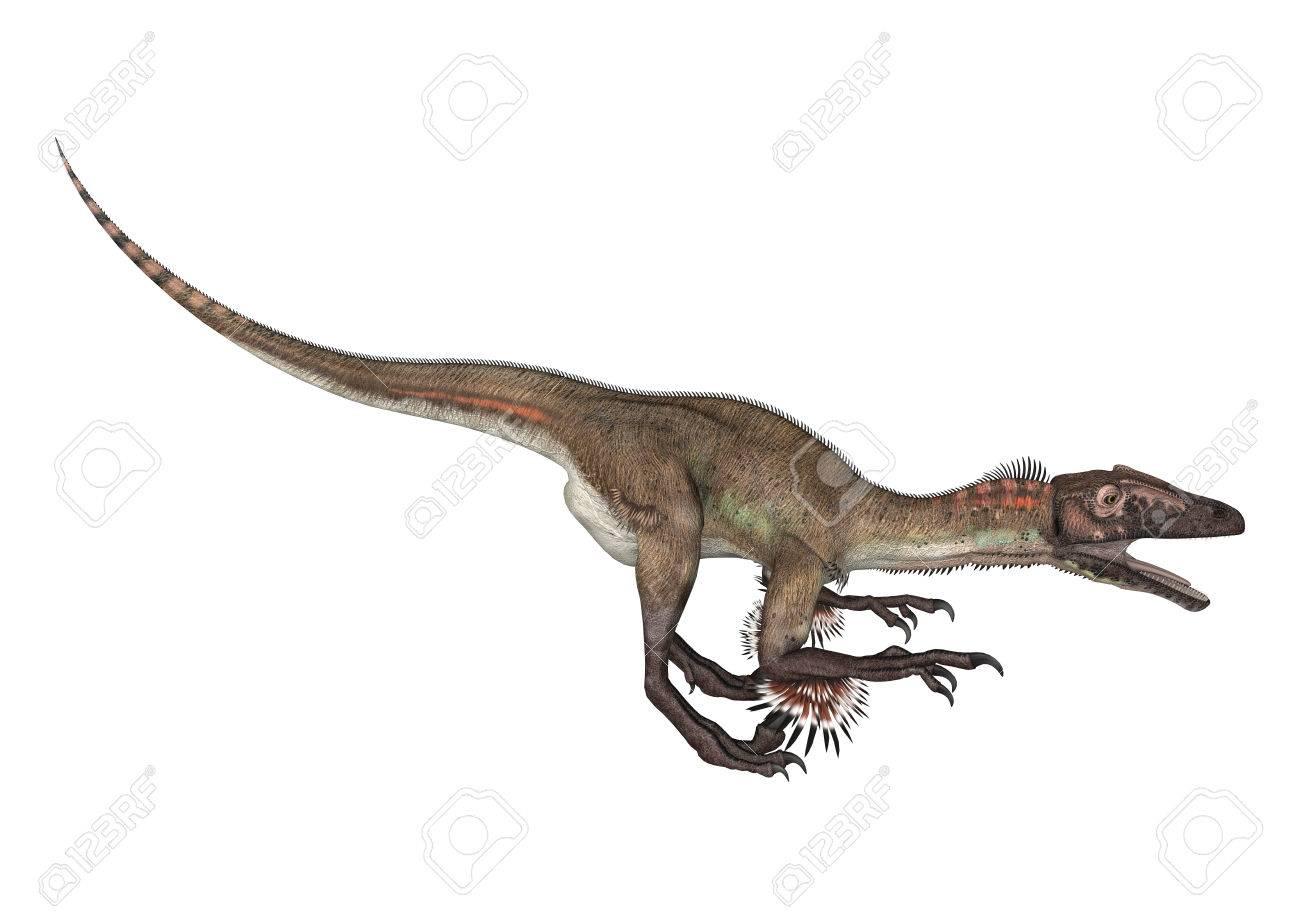 3D Digital Render Of A Dinosaur Utahraptor Isolated On White 1300x919