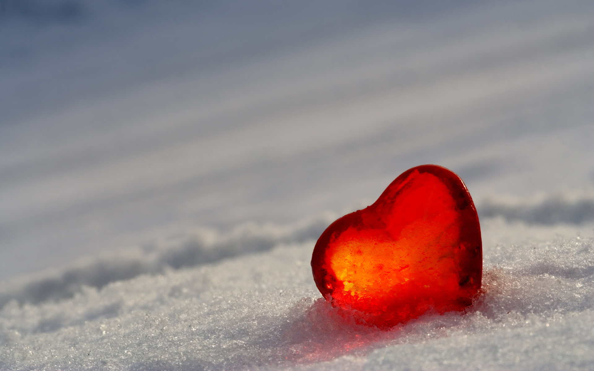 Beautiful and Romantic Valentines Day HD Wallpapers 3 1920x1200