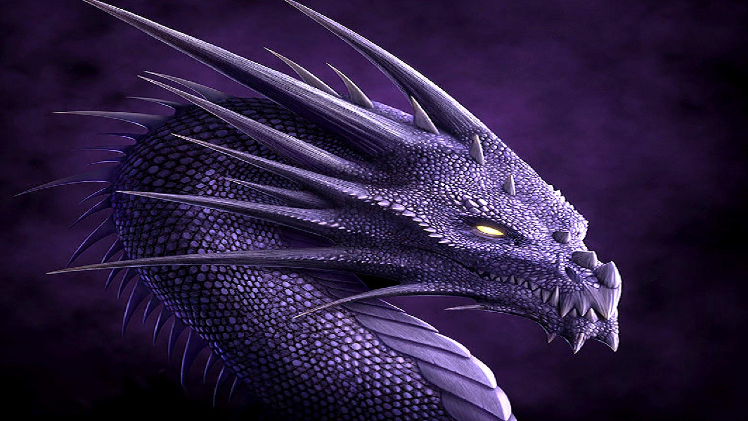 49+ 1080P Dragon Wallpaper on WallpaperSafari