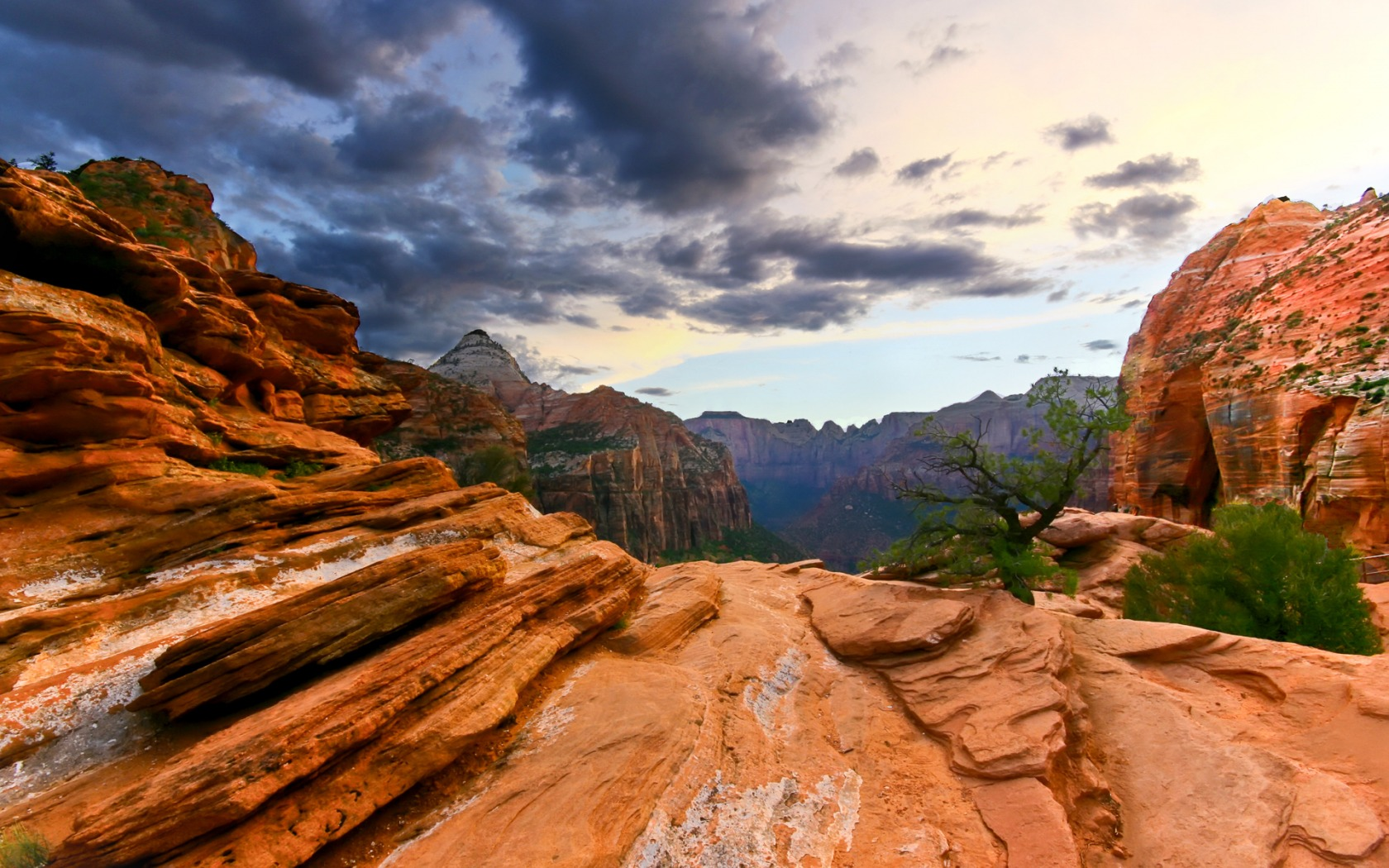 national park wallpaper landscape nature zion national park wallpaper 1680x1050