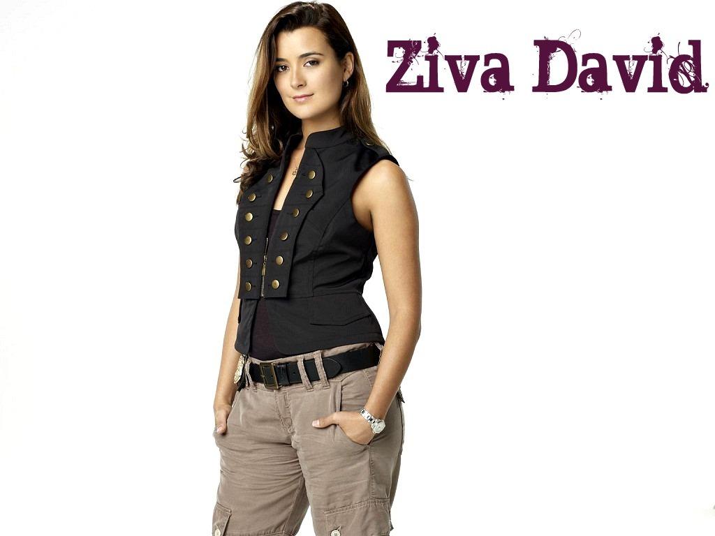 Ziva David Wallpaper   Ziva David Wallpaper 25967636 1024x768