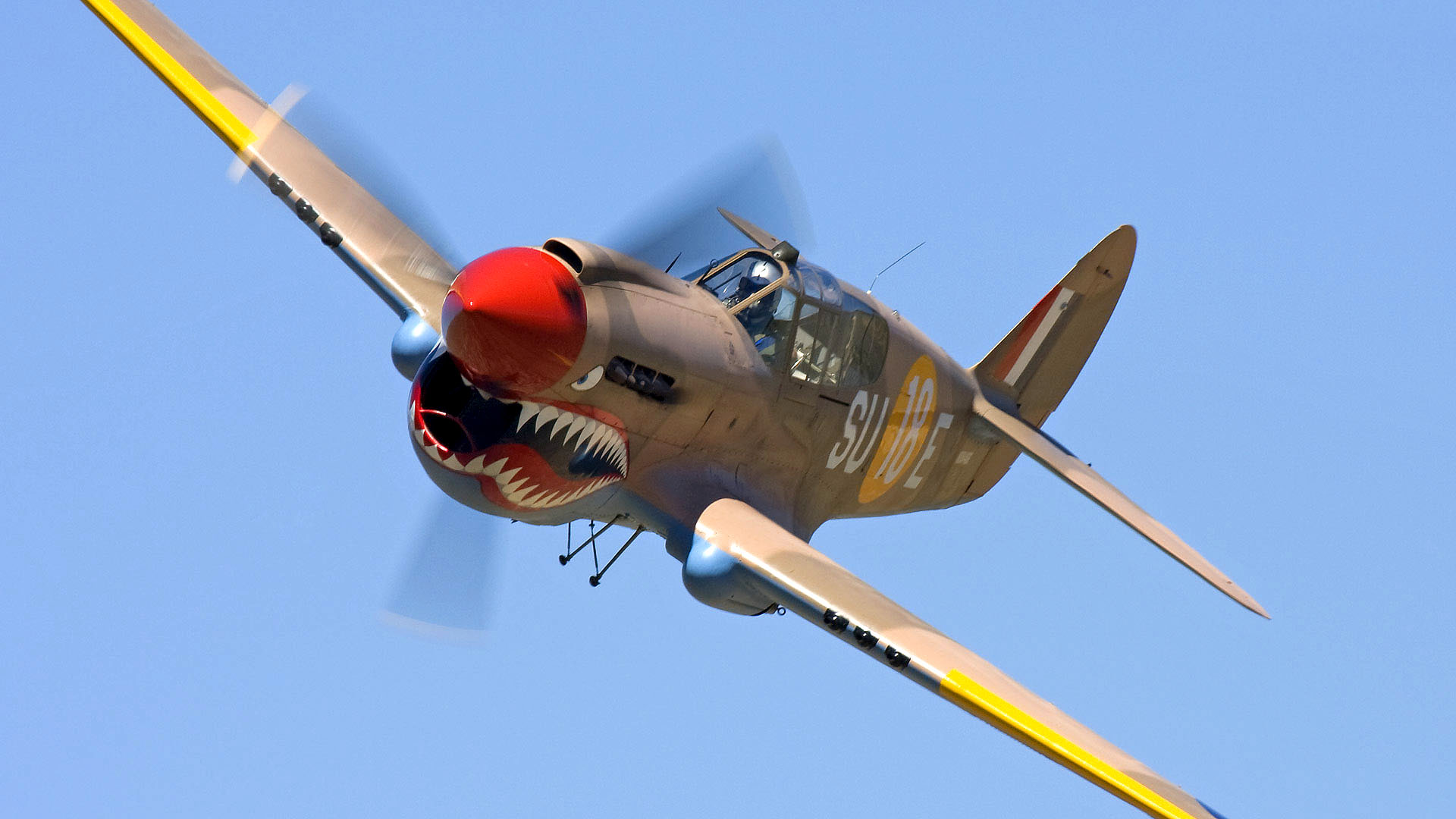 Curtiss P 40 Warhawk HD Wallpapers Backgrounds 1920x1080
