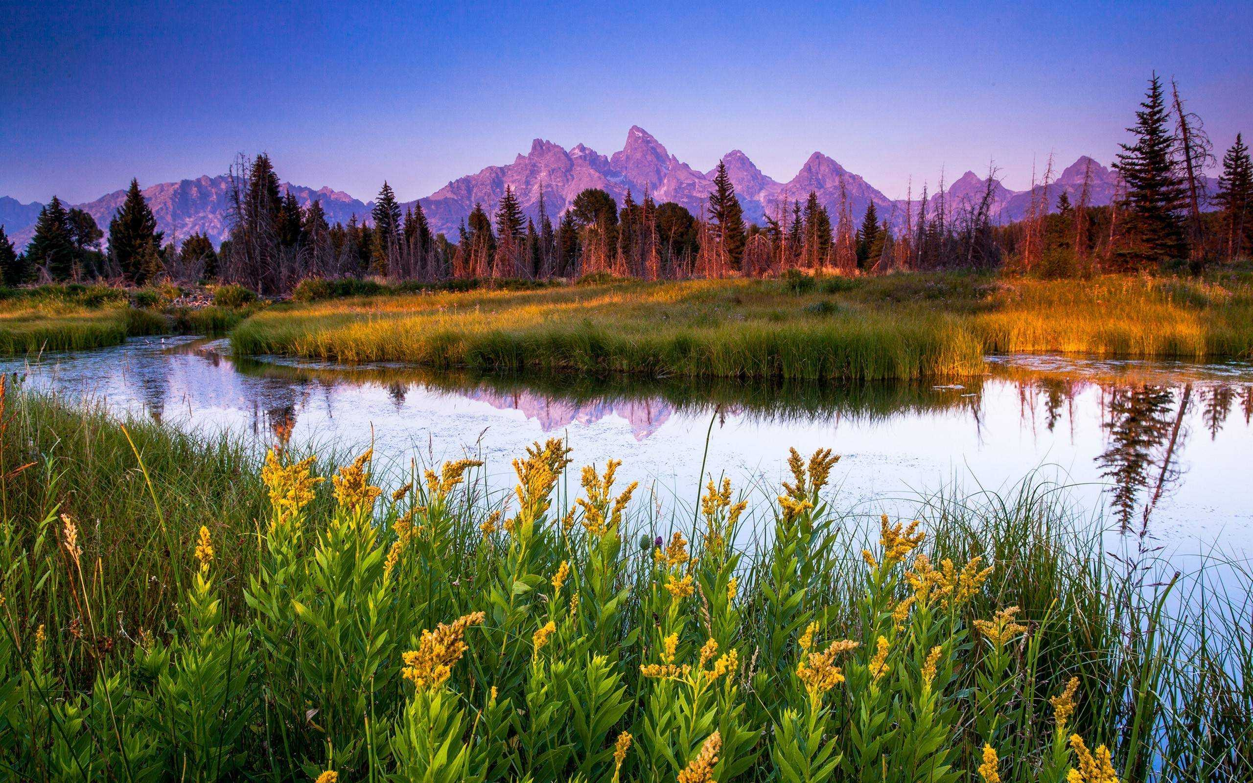 Grand Teton National Park HD Wallpapers Best Collection 2560x1600