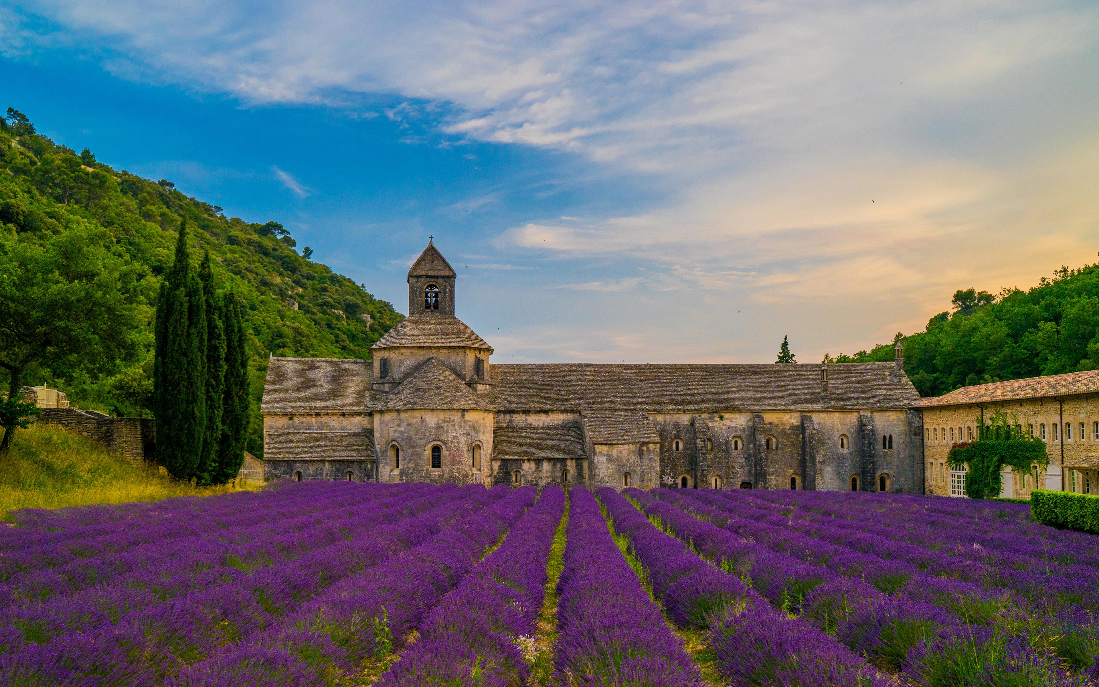 Wallpaper Monastery France Senanque Abbey Fields Lavandula 3840x2400 3840x2400