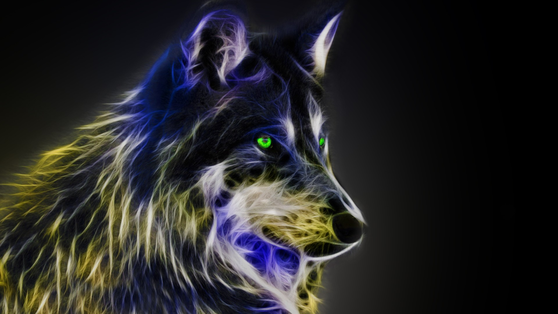 Cool Wolf Desktop Backgrounds HD 2021 Cute Wallpapers 1920x1080