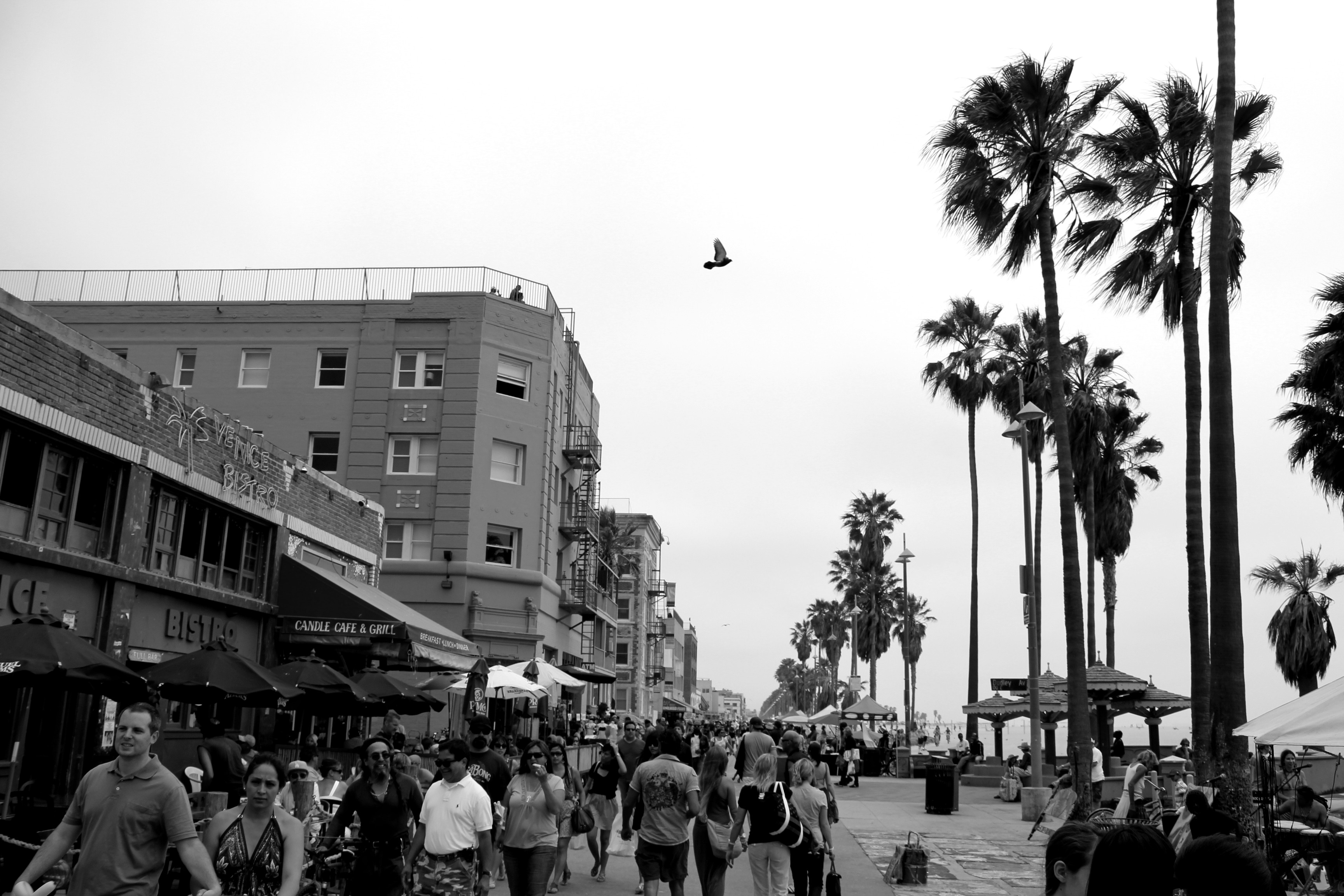 Venice Beach Computer Wallpapers 3456x2304