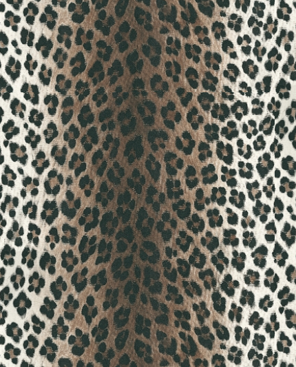 Black And Gray Leopard Print Wallpaper Images Pictures   Becuo 430x533