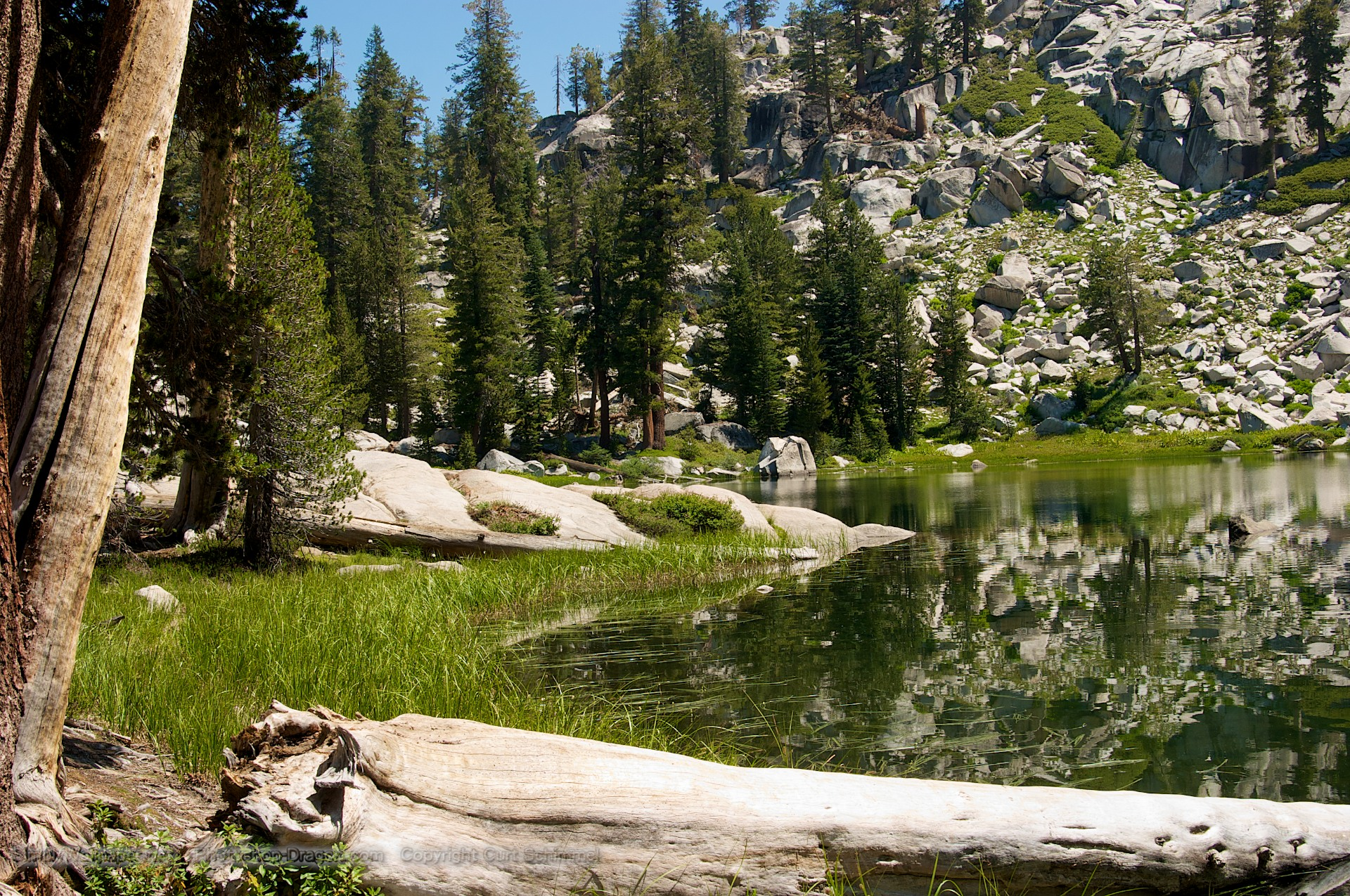 Secluded Pond at Sequoia National Park wallpaper   Click picture for 1920x1275