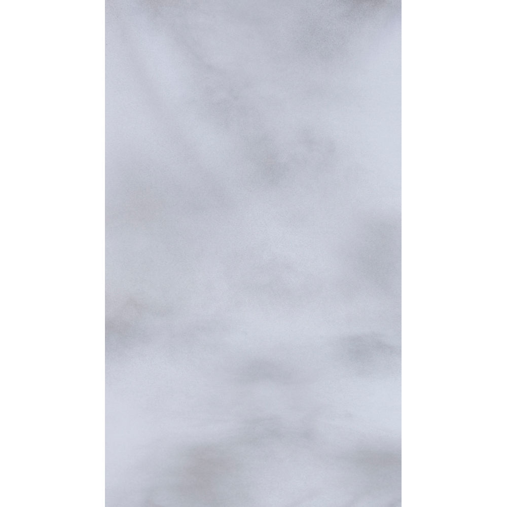 Botero 038 Muslin Background 10x12 White Light Gray 1000x1000