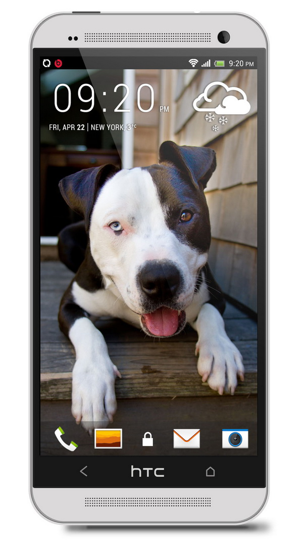 Pitbull htc one wallpaper   Best htc one wallpapers and easy to 600x1072