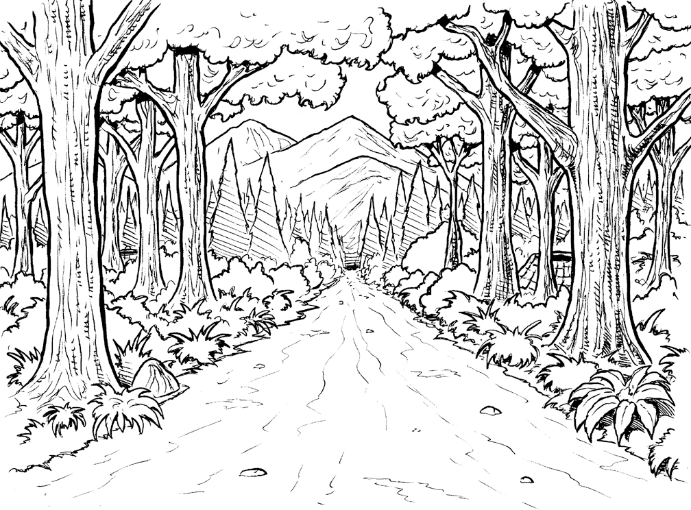 Rainforest Coloring Pages   Coloring Pages 1008x744