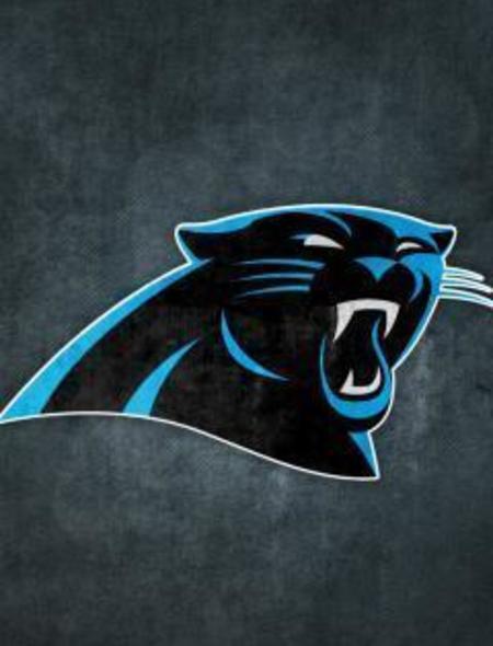 Carolina Panthers Grungy Wallpaper for iPhone 4 450x590