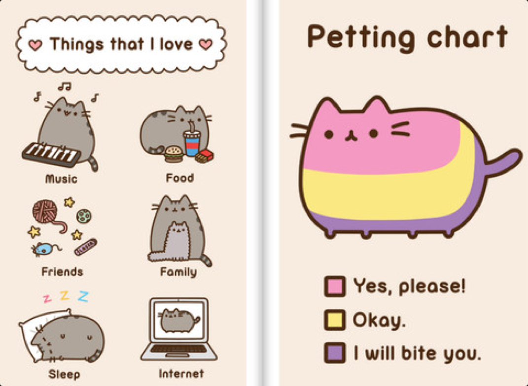 am Pusheen the Cat by Claire Belton   Pusheens DIYs 1071x784