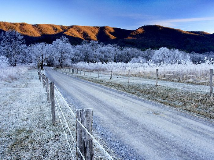 Lane Cades Cove Great Smoky Mountains National Park Tennessee Photo 49 700x525