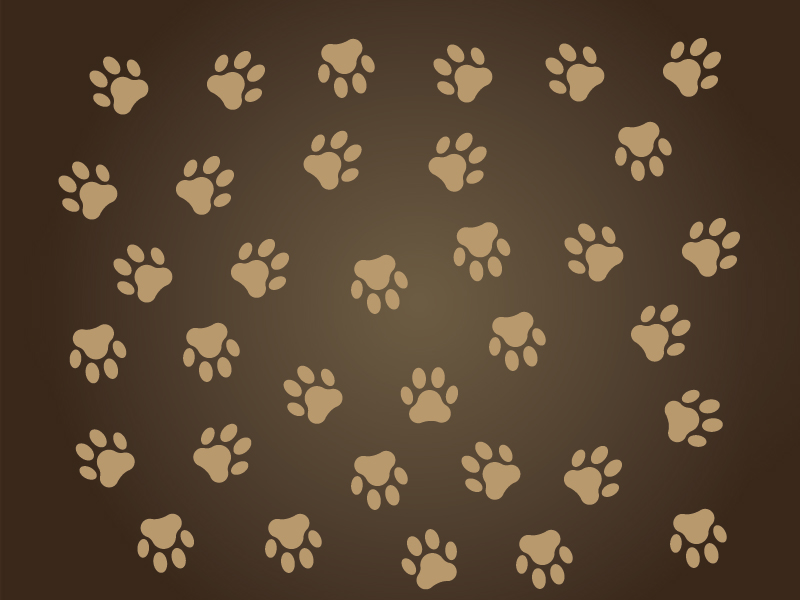Free Download Dog Paw Print Silhouette Vectorize Images Vectorize Images 800x600 For Your Desktop Mobile Tablet Explore 41 Dog Paws Wallpaper Dog Paw Print Wallpaper Border Dog Paw Print Upload only your own content. dog paw print wallpaper border dog paw