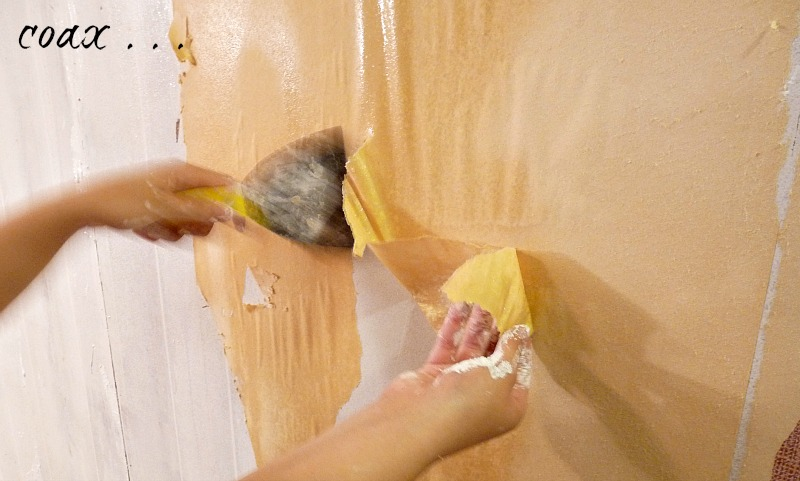 How to Easily Remove Wallpaper Dans le Lakehouse 800x481