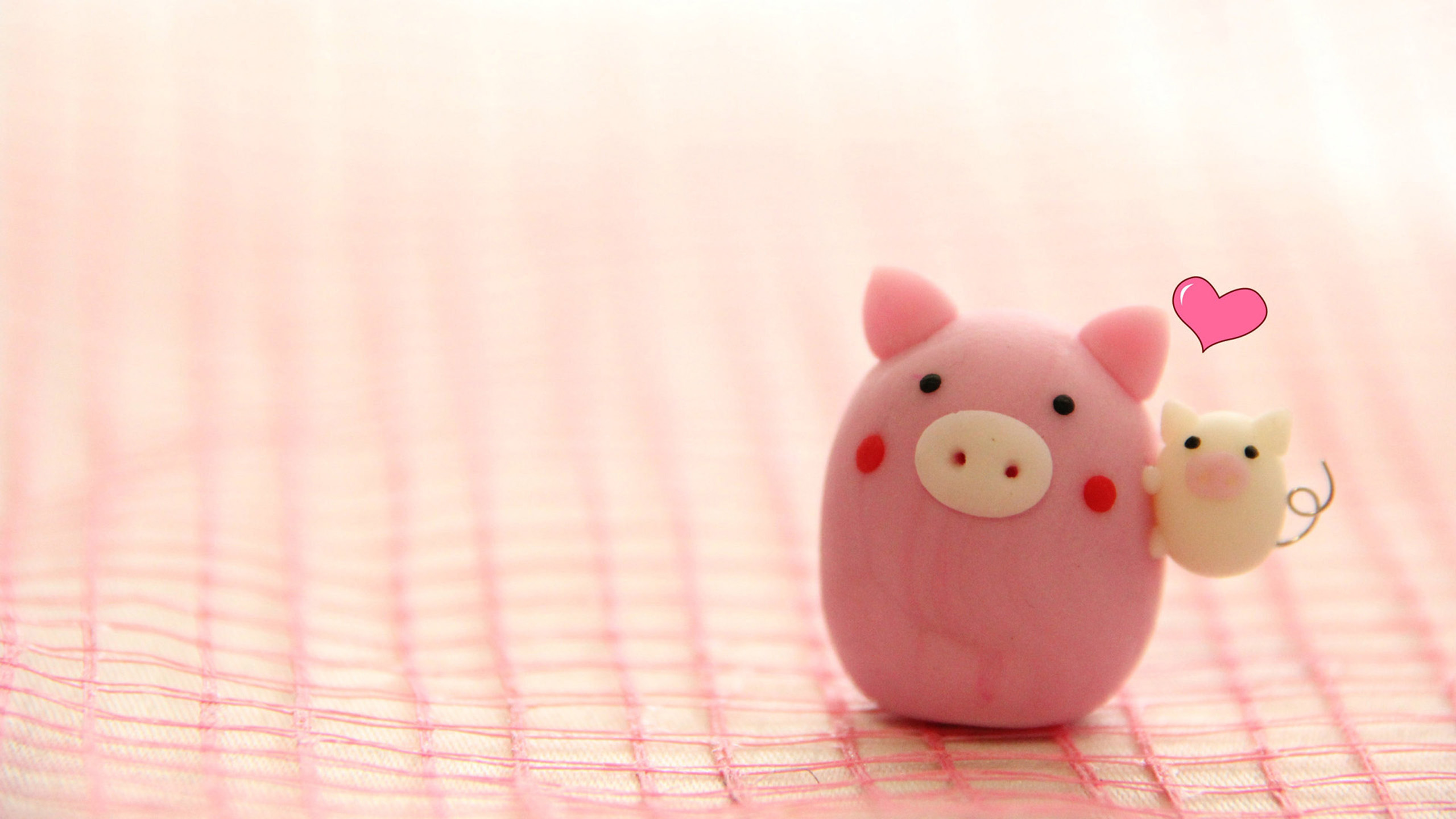Pig Wallpaper Collection For Download 2560x1440