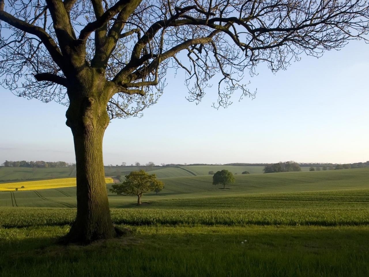 English countryside wallpaper 1280x960