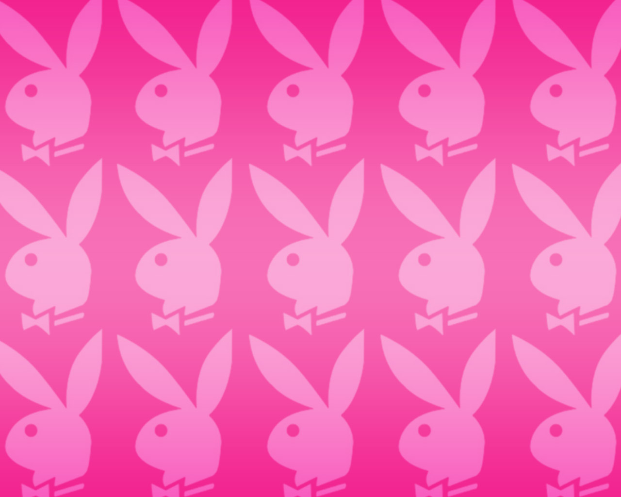 Bunny Phone Wallpapers For Desktop Backgrounds HD Wallpapers 1280x1024