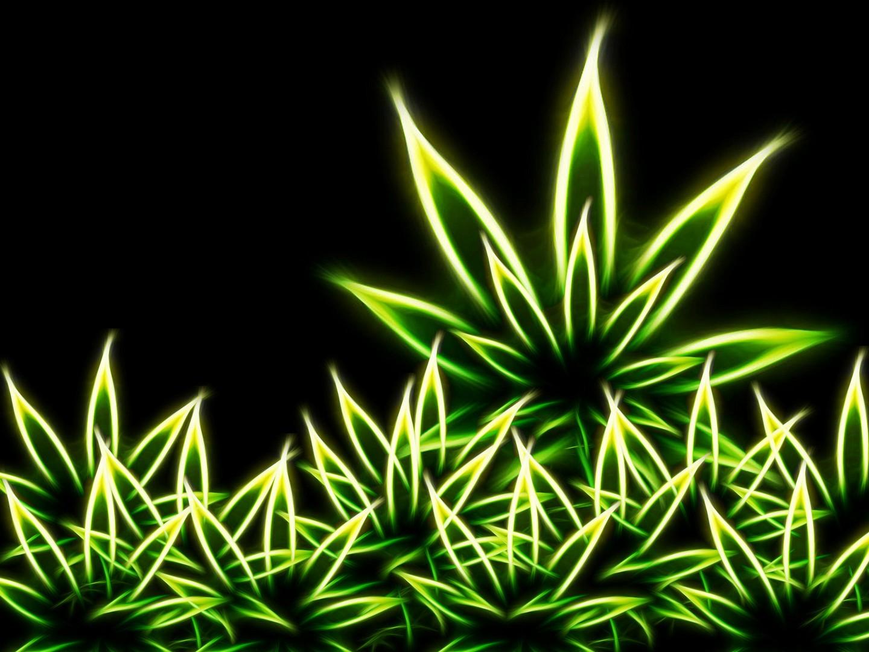 Weed Wallpaper 1440x1080