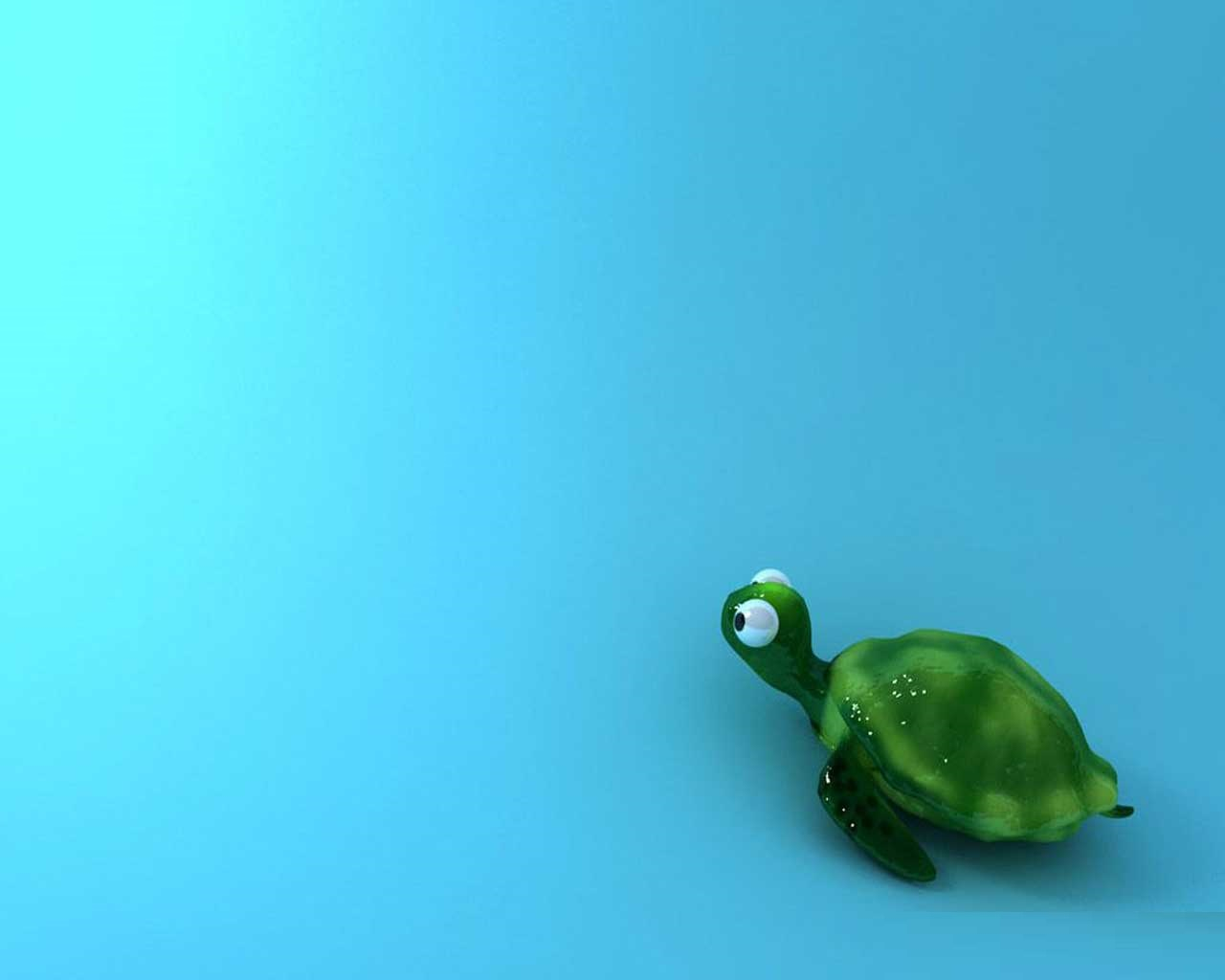 Cute Baby Turtle   Cute Wallpapers 1280x1024