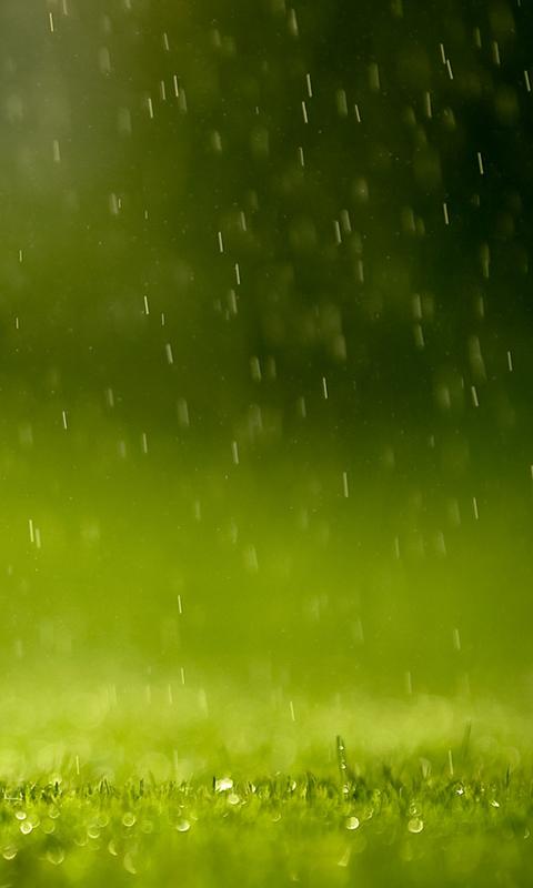49 Live Rain Wallpapers Windows 8 On Wallpapersafari