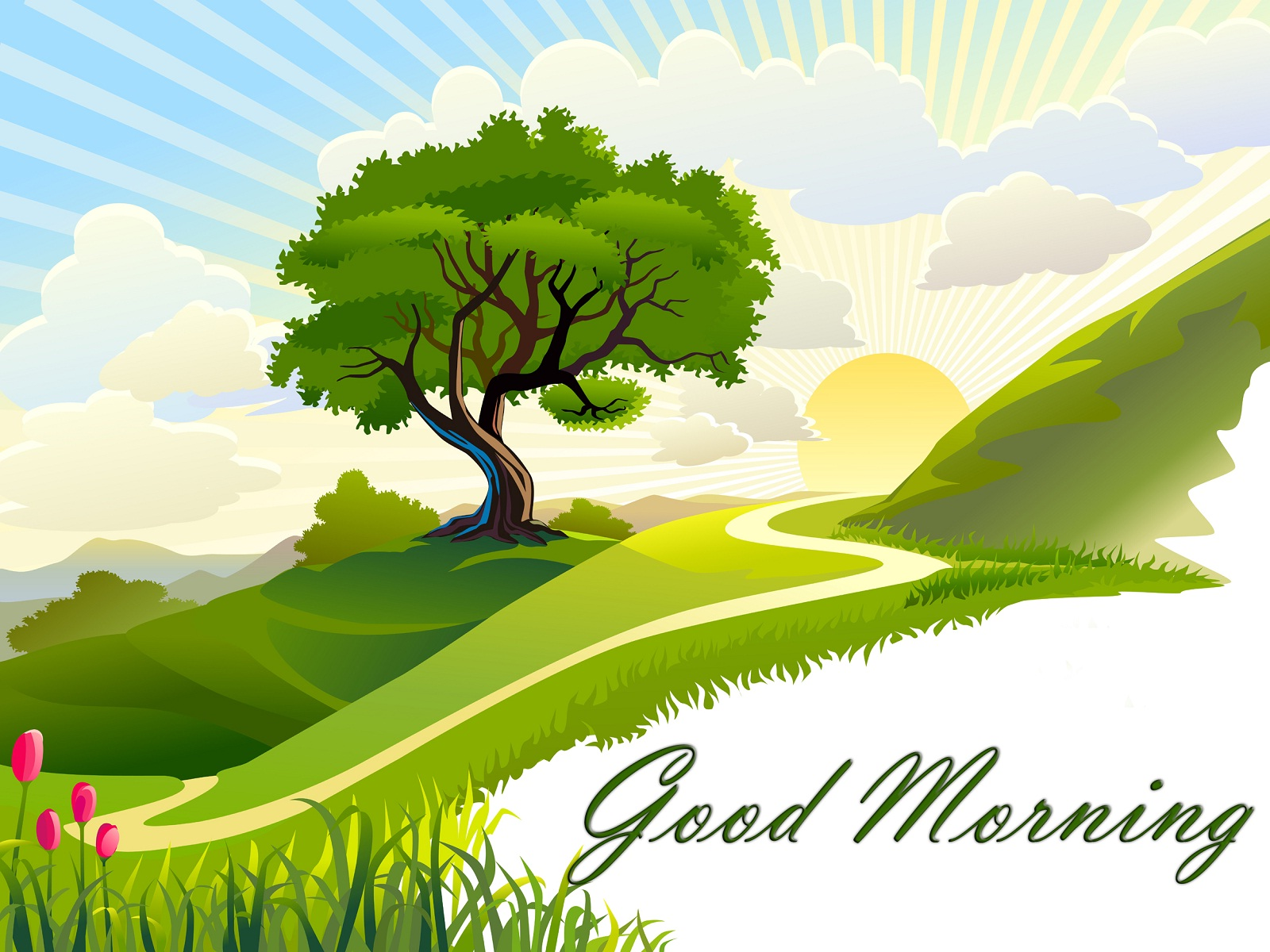 Good Morning Beautiful Wallpaper - WallpaperSafari
