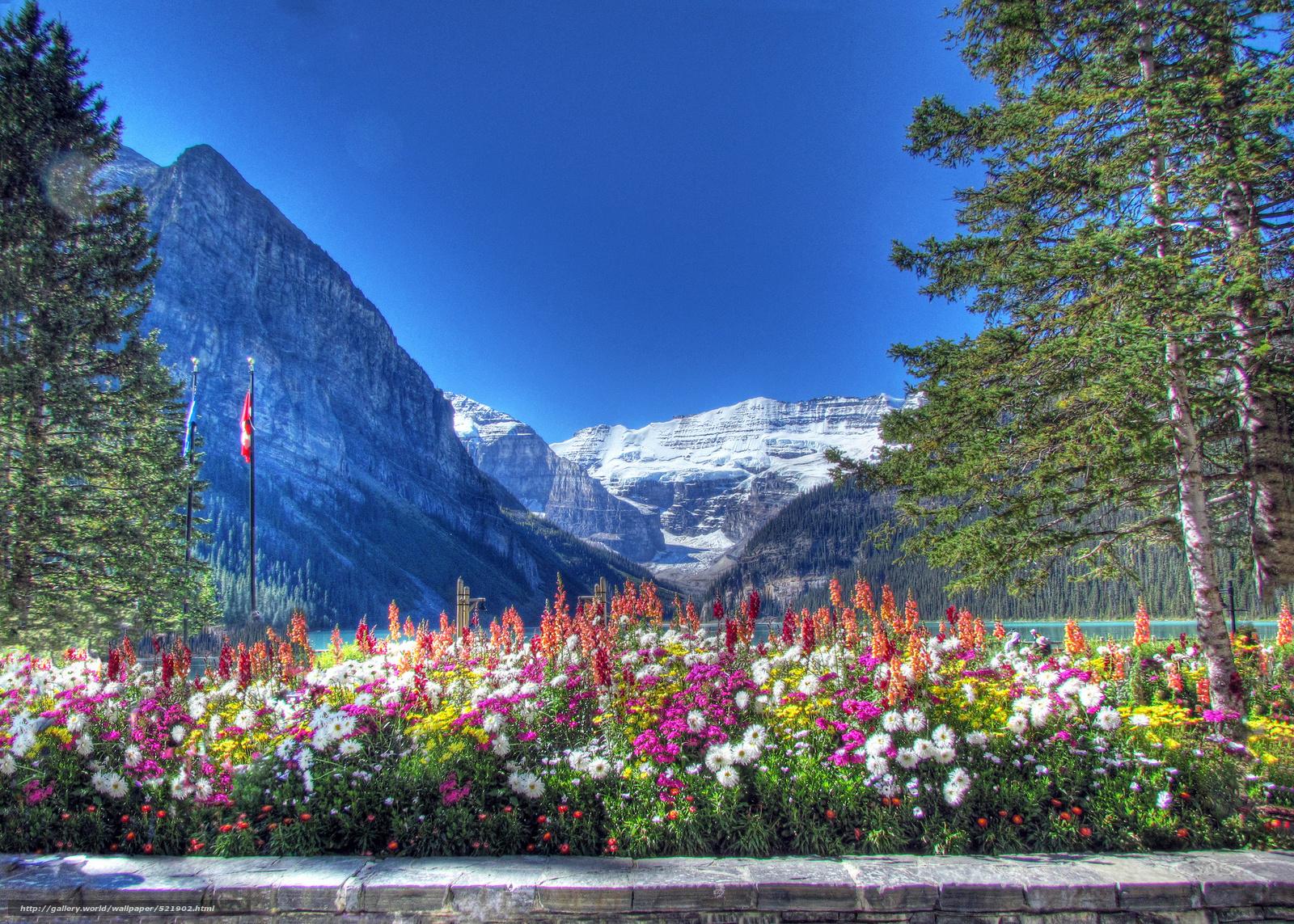 Download wallpaper lake louise canadian rockies banff national park 1600x1143