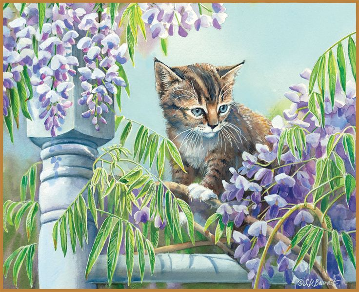 Lang Calendar Wallpaper June Downloadable Wallpapers Cat Art Tabby 736x598