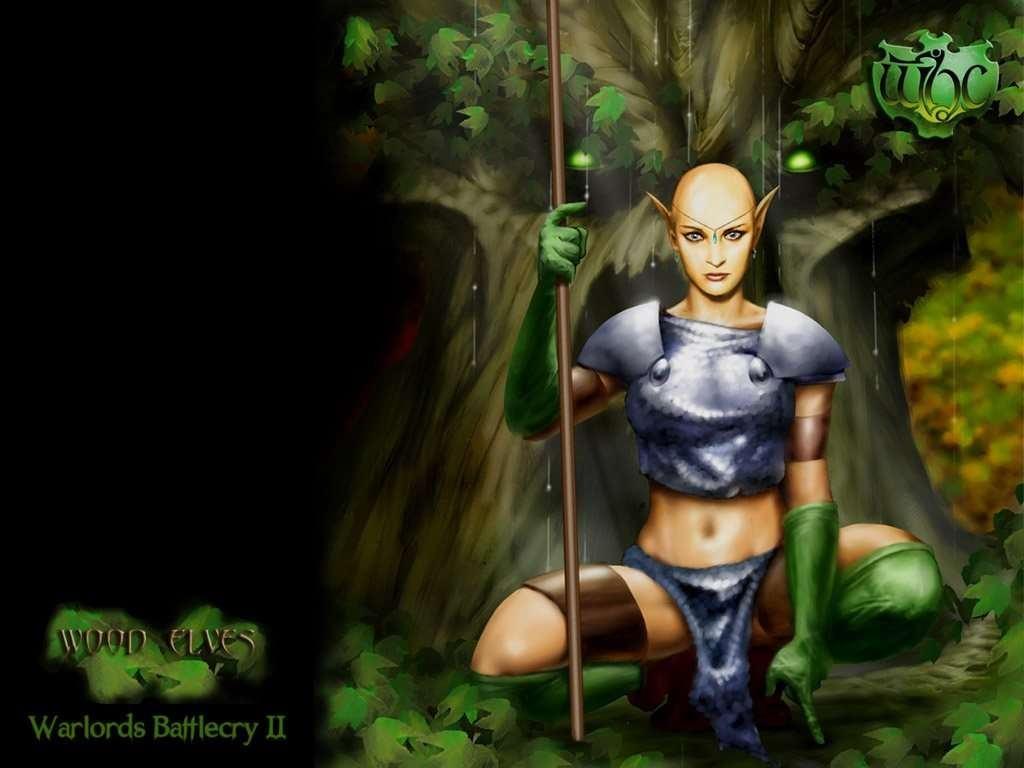 Wallpapers Backgrounds   Wood Elves Wallpaper 1024x768 1024x768