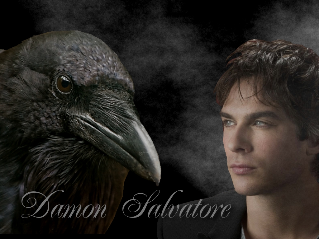 Damon and Crow   Damon Salvatore Wallpaper 28083552 1024x768