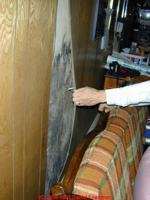 Removing Mold From Wood Unique Image Of How To Clean Mold