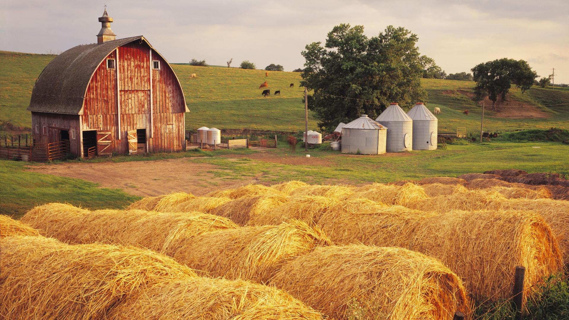 Farming Wallpaper HD 1920x1080