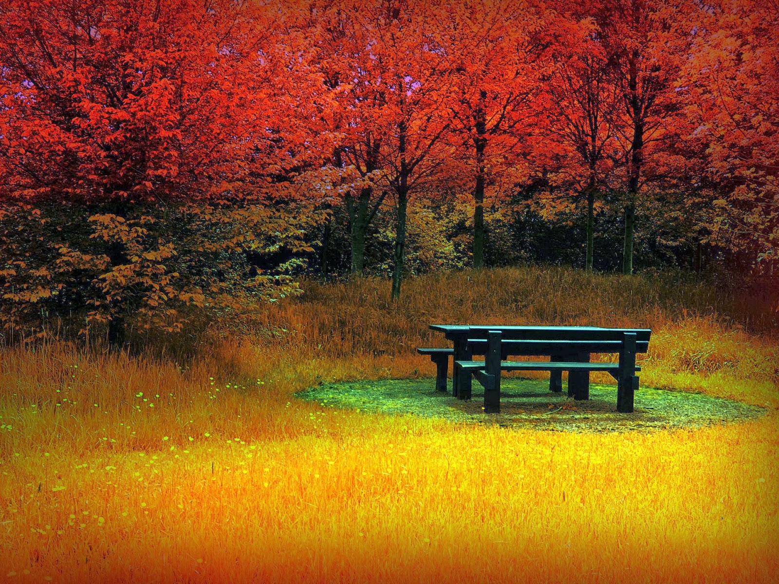 You can find 24 beautiful autumn wallpapers of beautiful landscapes of 1600x1200