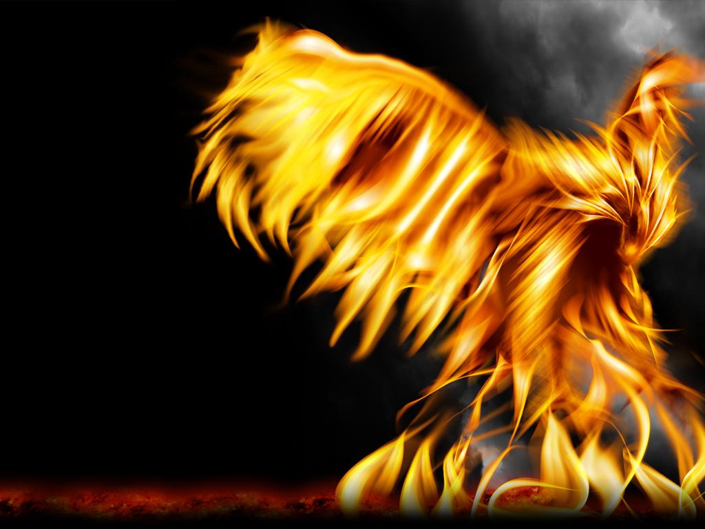 Phoenix Bird 35 Hd Wallpaper Wallpaper 1024x768
