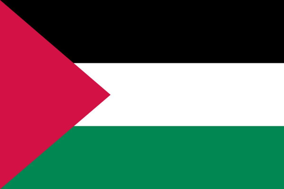 Palestine Flag Bandera De Palestina Wallpaper Download 1200x800