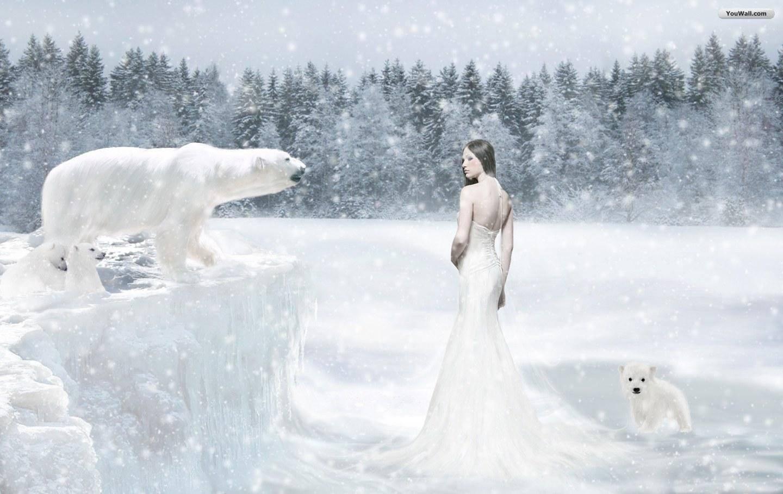 Snow   snow Wallpaper 1440x909