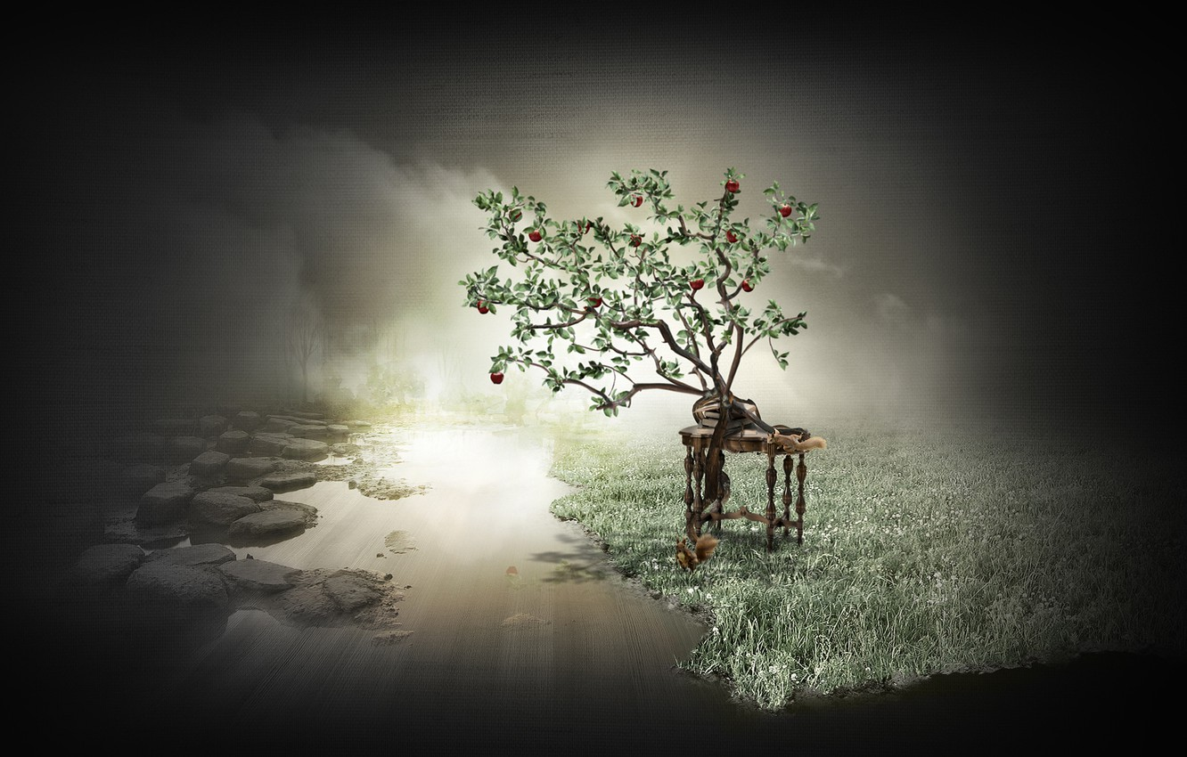Wallpaper table tree apples Apple protein Apple proteins 1332x850