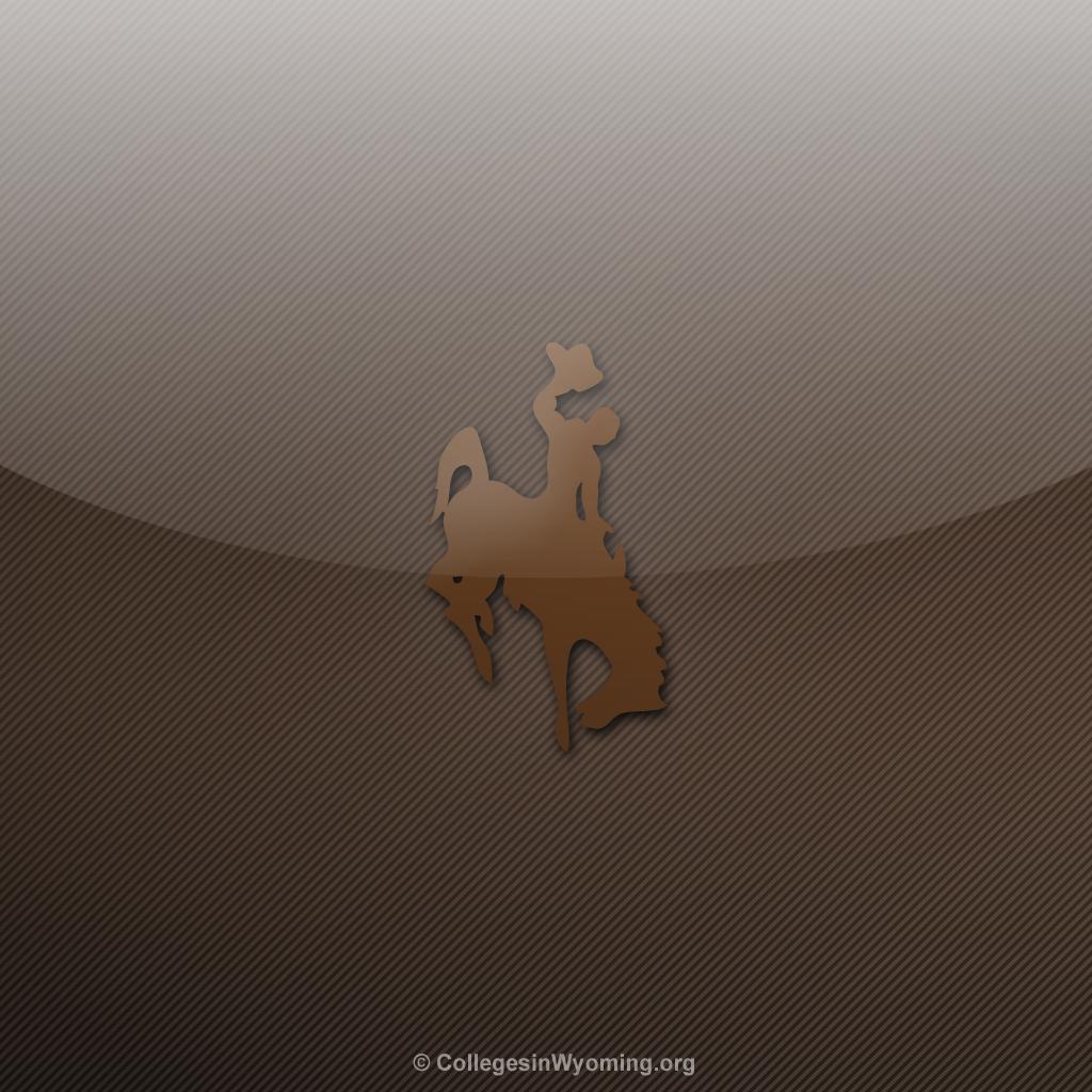 wyoming cowboys ipad wallpaper 4 University of Wyoming Cowboys 1024x1024
