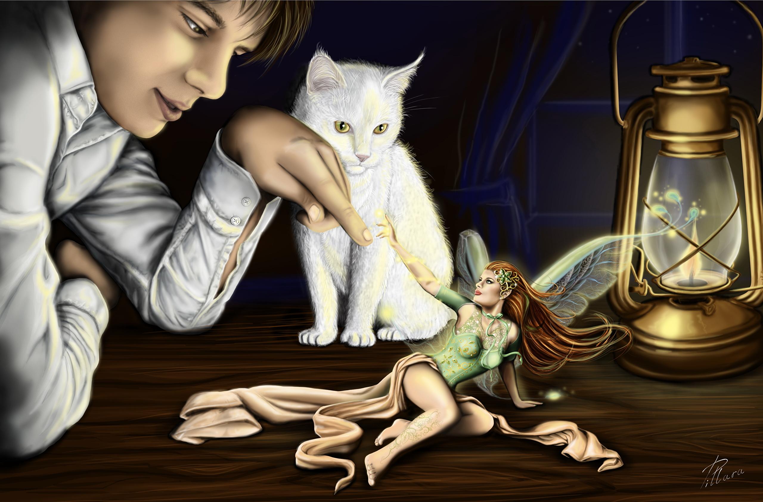 Desktop Wallpapers Cats Fairies Man Girls Fantasy paraffin 2560x1685 2560x1685