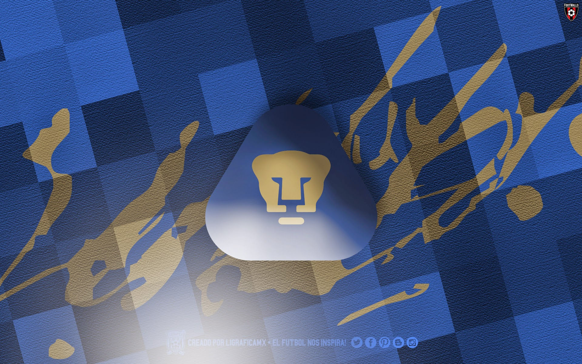 62 Pumas Wallpapers on WallpaperPlay 1920x1200